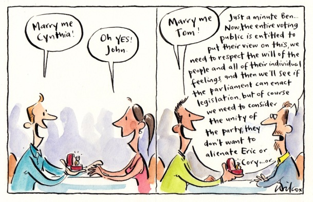 Image result for cathy wilcox