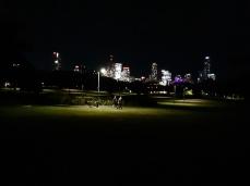 My city from New Farm Park. Copyright Lloyd Marken.