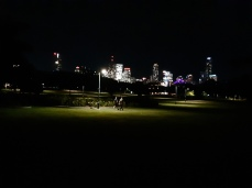 My city from New Farm Park. Copyright Lloyd Marken.