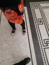 New unicorn shoes on the famous tiled floor of Brisbane City Hall. Copyright Lloyd Marken.