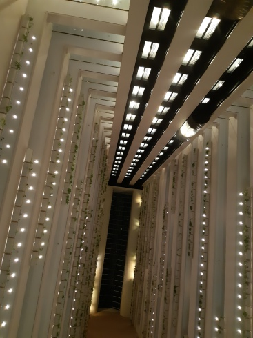 In the Hilton Hotely lobby looking up. Copyright Lloyd Marken.
