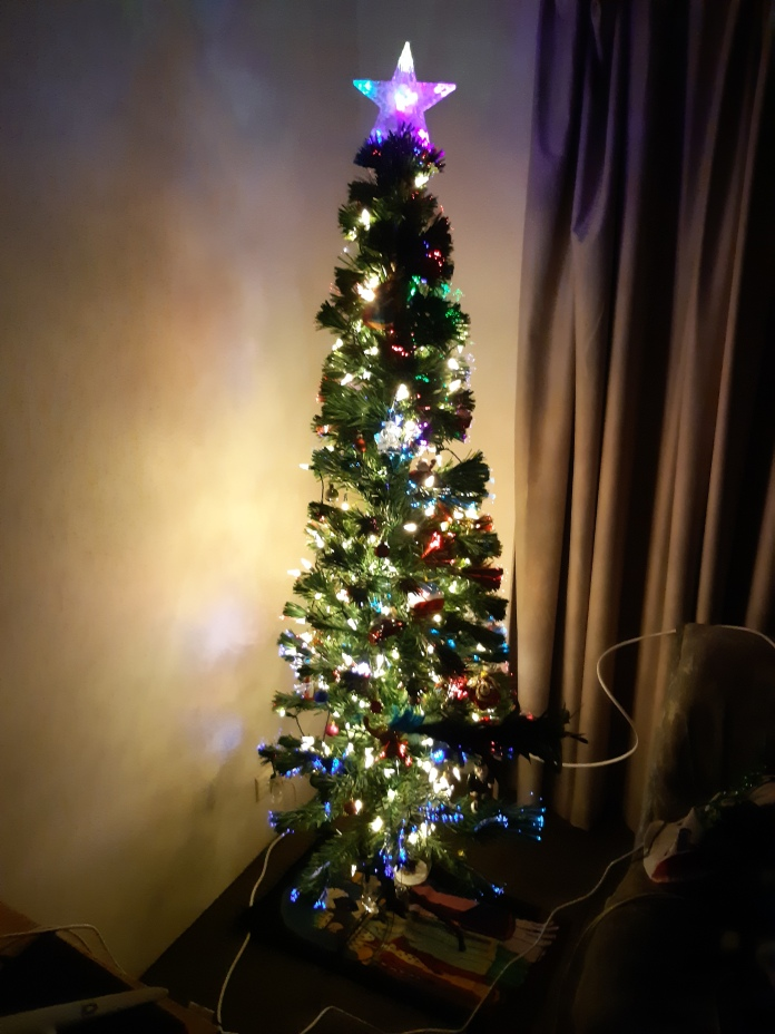 The Copyright Lloyd Marken.first time our Christmas tree was lit up in 2019. Copyright Lloyd Marken.